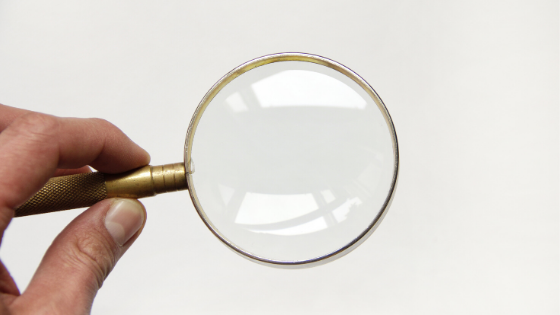 CVW Accounting - what is due diligence?